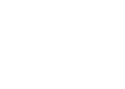 Challengize